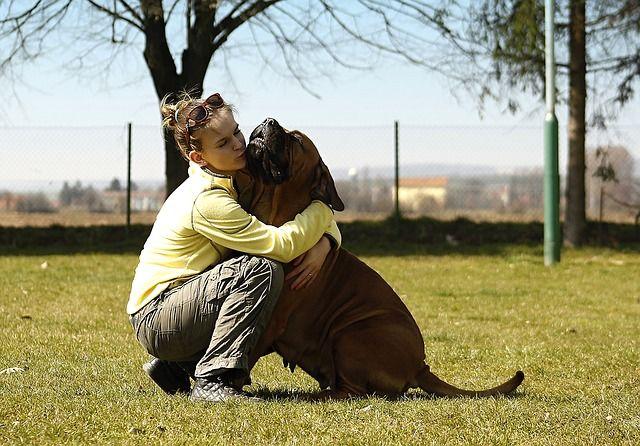 """Dein Hund sagt """"Ich liebe dich"""""""