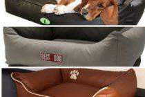 TOP 3: Die besten Hundebetten aus Kunstleder
