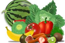 Diese Obst und Gemüse sind für deinen Hund geeignet (Liste)