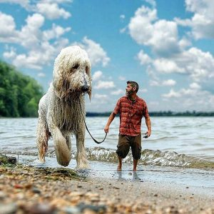 giant-dog-photoshop-adventures-juji-christopher-cline-83