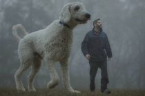 6 spektakuläre Fotos: Ein Mann und sein Hund
