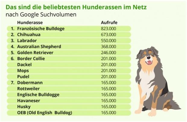Das sind die beliebstesten Hunderassen