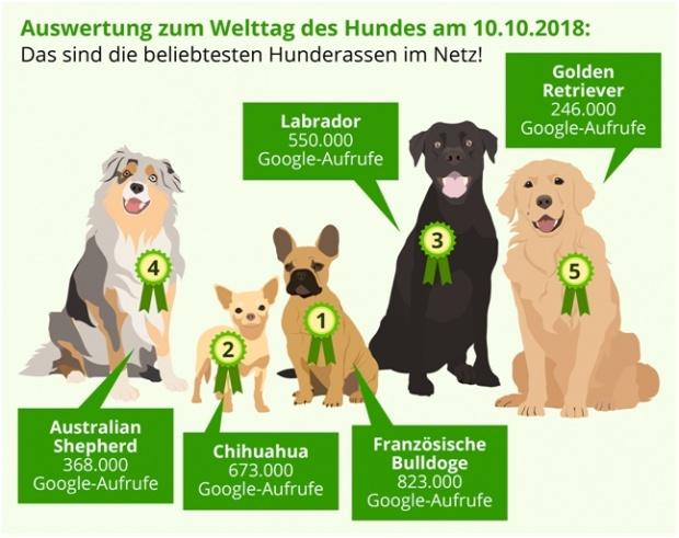 Auswetung zum Welttag des Hundes